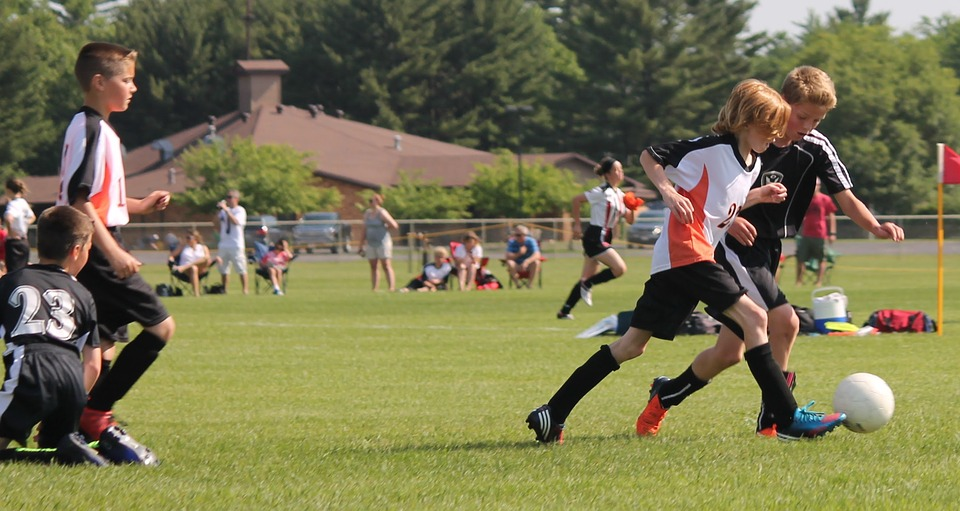 youth sports privatized